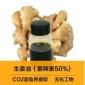 �S家供��生姜油 姜辣素50 姜精油 精油原料批�l姜根油超�R界姜油